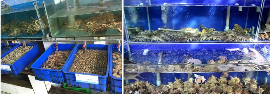 Tin tức thị trường nước biển tại Nam Bộ